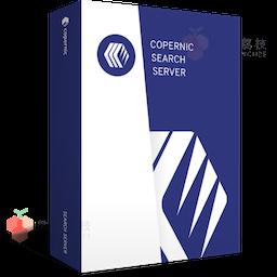 Copernic Server Search