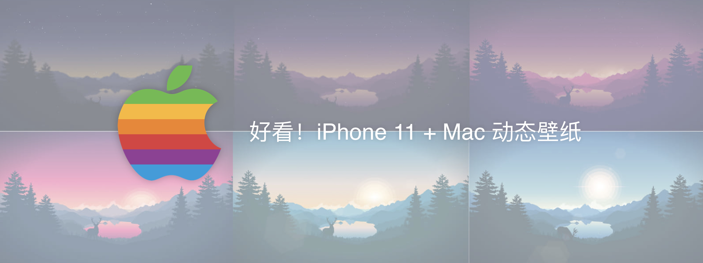 还没入手 iPhone 11?先来体验一发原生壁纸吧